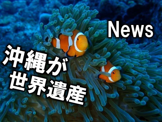 ㊗沖縄の豊かな自然がユネスコ世界自然遺産に登録 久々に沖縄に明るいNewsが♪