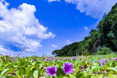沖縄地元民が教える沖縄観光で必ず行きたい3つの場所! 沖縄屈指のリゾート地 恩納村編