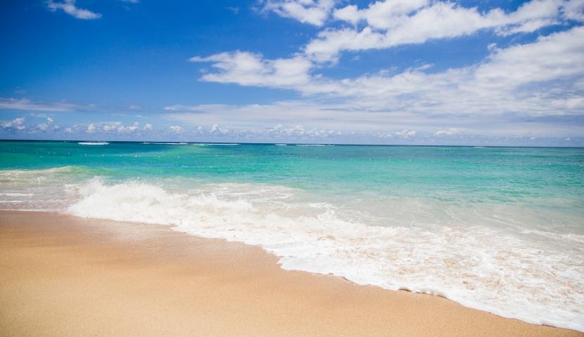 沖縄のおすすめグルメ海ぶどう